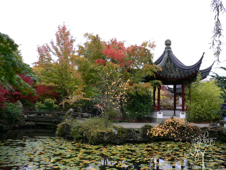 Японский сад москва 12 фотография